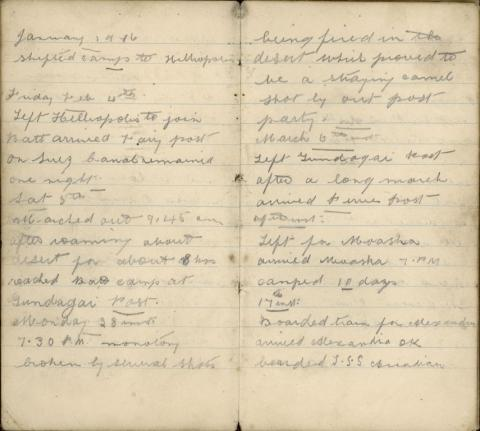Faded scans of diary excerpts.