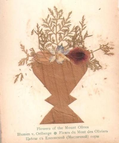 Photo depicts dried, pressed flowers.